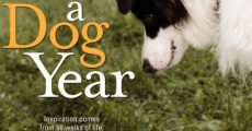 Pet Therapy - Un cane per amico