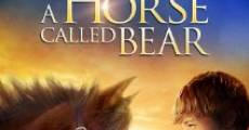 Película A Horse Called Bear