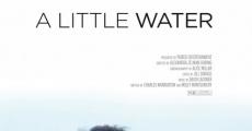 Ver película Un poco de agua