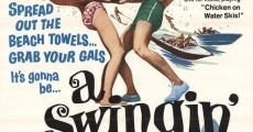 Ver película A Swingin' Summer
