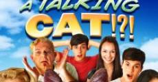 Película A Talking Cat!?!