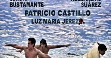 Acapulco la vida va (2013)