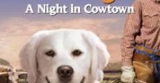 Película Adventures of Bailey: A Night in Cowtown