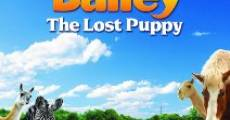 Adventures of Bailey: The Lost Puppy (2010) stream