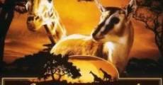 Película African Bambi