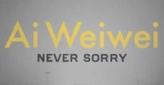 Película Ai Weiwei: Never Sorry