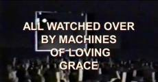 Película All Watched Over by Machines of Loving Grace