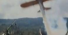 Película Amelia Earhart