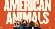 American Animals (2018) stream