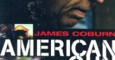 Ver película American Gun