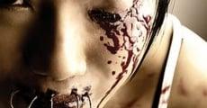Ver película Art of the Devil 2