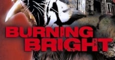 Filme completo Burning Bright
