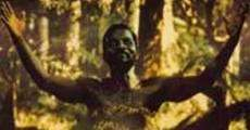Ver película Au nom du Christ
