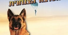 Ver película Azit the Paratrooper Dog