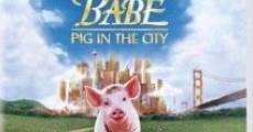 Babe II, un chanchito en la ciudad