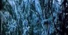 Ver película Barcelone, Parc au crépuscule