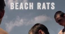 Ver película Beach Rats
