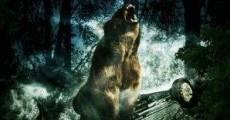 Película Bear