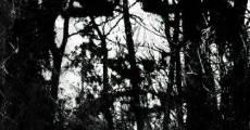 Big Bad Wolf (2013) stream
