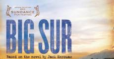 Big Sur streaming