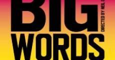 Big Words (2013) stream