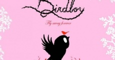 Película Birdboy