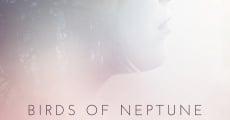 Película Birds of Neptune