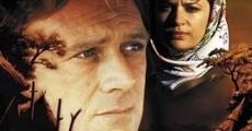 Ver película Blind Justice