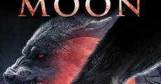 Película Blood moon