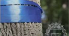 Blue Ribbon Winner (2015) stream