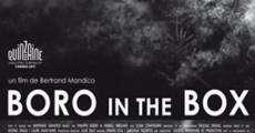 Película Boro in the Box