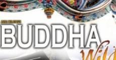 Película Buddha Wild: Monk in a Hut