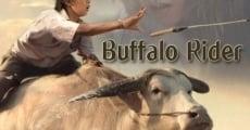 Película Buffalo Rider