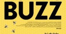 Película Burt's Buzz