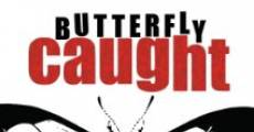 Butterfly Caught (2015)