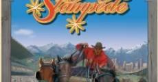 Ver película Calgary Stampede Grandstand Show