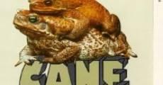 Ver película Cane Toads