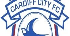 Ver película Resumen de la temporada 2012-2013 del Cardiff City