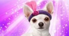 Película Chihuahua Too!