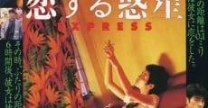 Ver película Chungking Express