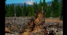 Clearcut Nation (2013)