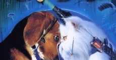 Cats & Dogs film complet