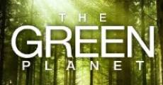 Das grüne Wunder - Unser Wald (2012) stream