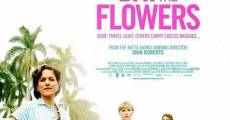 Day of the Flowers (2013)