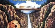 Homeward Bound: The Incredible Journey film complet