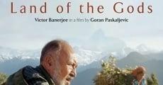 Ver película Tierra de los Dioses