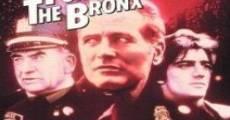Bronx 41º distretto di polizia