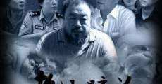 Ver película Disturbing the Peace