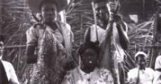 Película Divine Horsemen: The Living Gods of Haiti