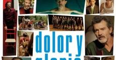Ver película Dolor y gloria